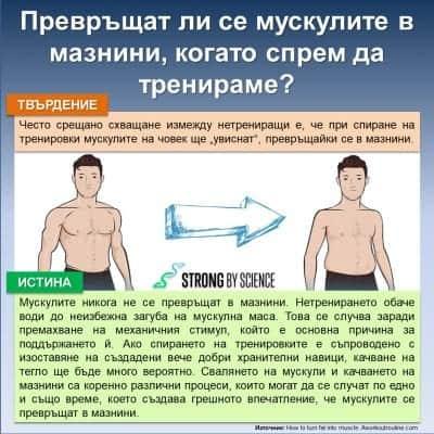 Превръщат ли се мускулите в мазнини, когато спрем да тренираме?