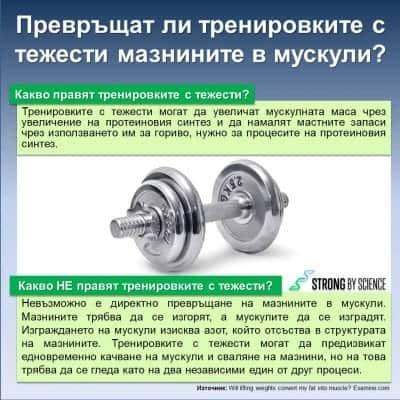 Превръщат ли тренировките с тежести мазнините в мускули?