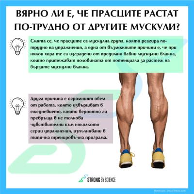 Вярно ли е, че прасците растат по-трудно от другите мускули