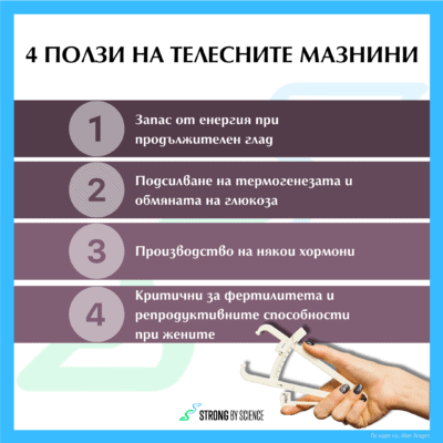 4 ползи на телесните мазнини